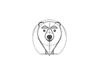 bear - sketch