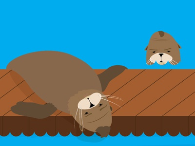 Seals illustration san francisco wharf sea lions