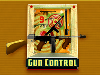 Gun control lg2