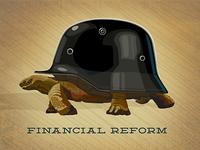 Financial Reform  Occupy wallstreet