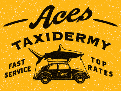 Aces Taxidermy
