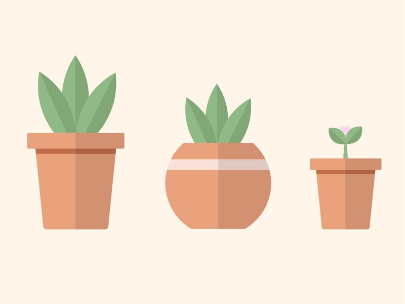 Plant pots 🌱 colour simplistic minimal space landscape poster tutorial uiux experiment trial graphic design illustration illustrate illustrator plants design