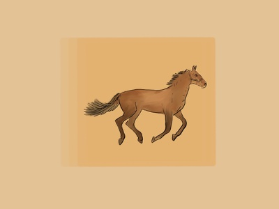 For the article about UX Animation moving horse animals animal illustration illustration