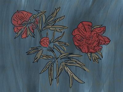 Flowers flowers illustration