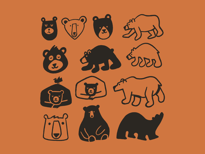 Bear studies ✍️🐻 drawing bears bear doodle art illustration