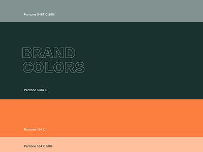 Hdz Concrete Brand Colors color palette branding