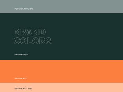 Hdz Concrete Brand Colors