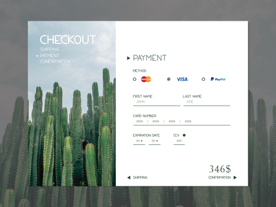 Credit Card Checkout Page credit card brand typography ui everydaydesign illustration design