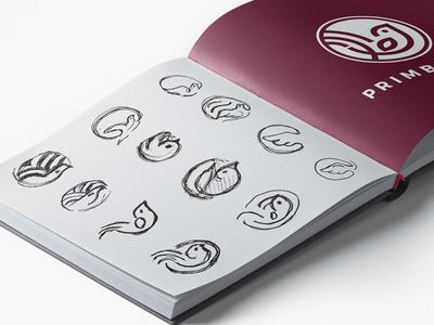 Primberry Logo Sketches Process