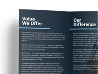 Risk Strategies brochure design and layout