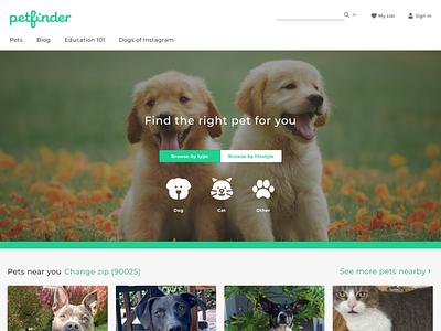 Find a pet homepage redesign desktop visual design homepage ui design