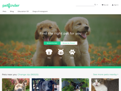 Find a pet homepage redesign desktop visual design homepage ui design