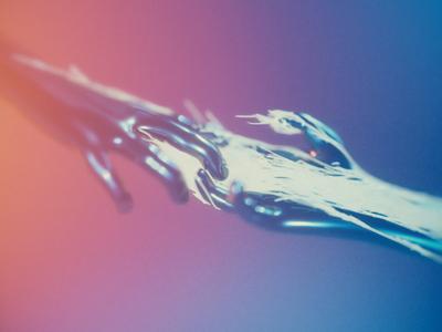 Reach! X-P_Branches
