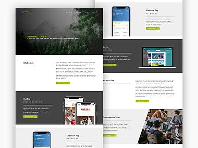 Development Agency Website frontend developt web design webagency ux uid sketch photoshop design colors
