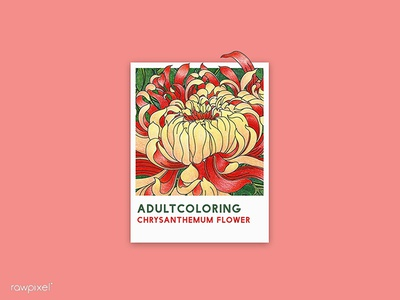 67 Pantone - Chrysanthemum Flower