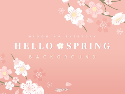 Hello Spring : Background