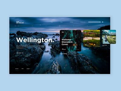 Web Design. Vol. 6 web design web vector pack uidesigner uidesign design kit ui interface illustration branding design dashboard dailyui branding app branding app