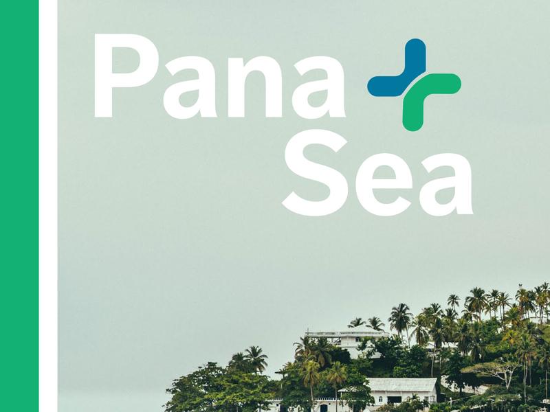 PanaSea Branding creativedirection creative typogaphy iconography minimal illustration logo logodesign brand identity graphic design branding
