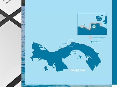 Panasea Brand Assets 1 type vector brand identity creativedirection creative branding vector illustration art design illustrations