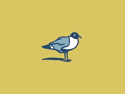 Sea Bird seagull bird icon illustration