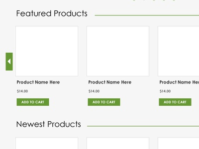 New Online Shop (Ecolicious Charlotte)