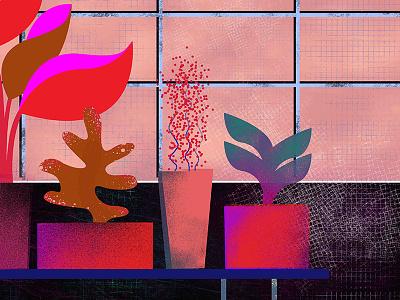 greenhouse flowerpot leaf colorful plant green illustration flower