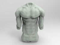 Anatomy sculpting_3D