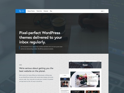 Array v3.0 homepage site design wordpress europa proxima nova blue gray clean type