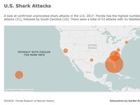 U.S. Shark Attacks
