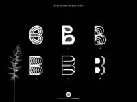 Letter B Explorations - (2/26)