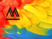 Macaw Blog