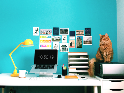 Home Office 2015 home homeoffice office workspace homestation mac cat officedesk