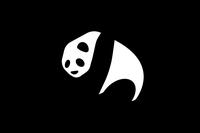 19 Panda Wallpaper