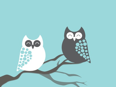 Owls character creation design graphic design flat design owls vector illustration