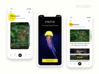 Wildlife Project UI Design