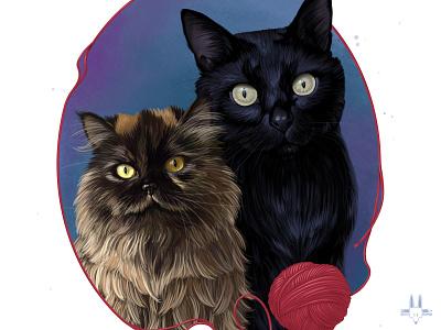 Commissioned Portrait cats design illustration digitalart rikoandthehuman