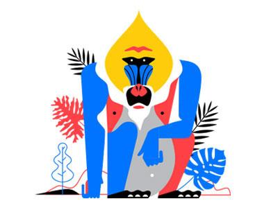 Mandrill illustrator wild animal mandrill vector illustration monkey