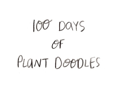 100 Days of Plant Doodles the 100 day project hand lettering letters plants plant illustrations lettering type