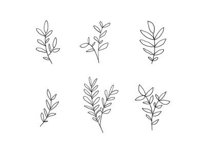 Six Plant Doodles botanical line drawing illustration doodle plants leaves leaf plant