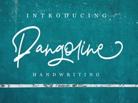 Pangoline | Handwriting Script Fonts