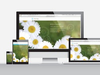 Responsive Web – Vector Illustration