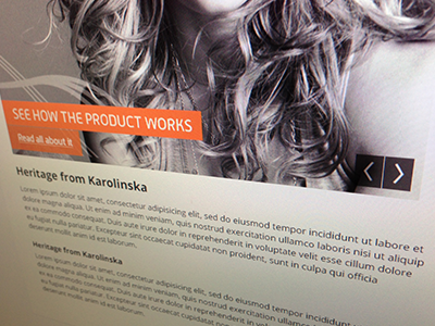 Secret client project #1 web design site client