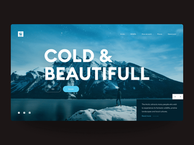 Website concept for WWR Arctic tourism