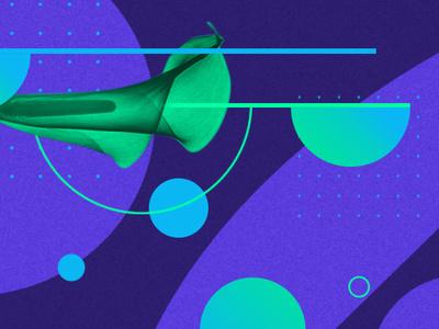 Meet Fronda! | Landscaping Startup - Banner web app impact lenguaje grafico poster art logo branding vector ui illustration graphic art trending design trend poster argentina graphic design