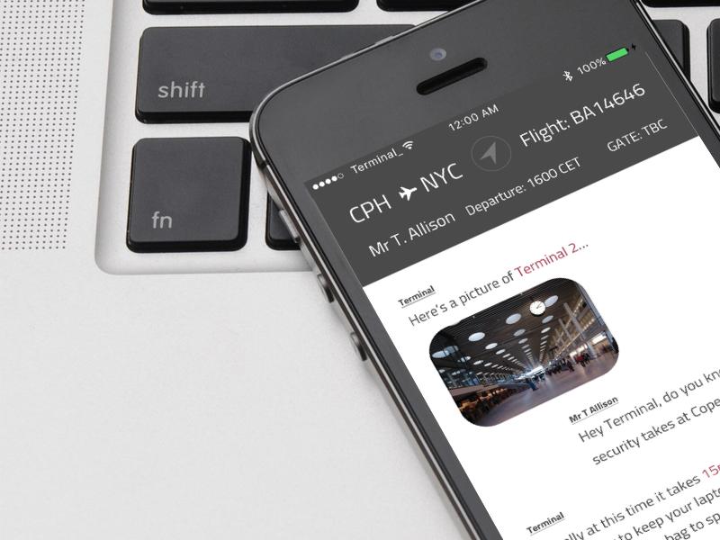 _Terminal ✈️ airport message bot conversational