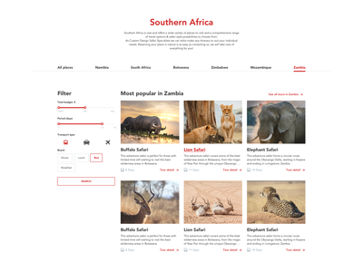 Southern Africa Safari Style tours designs filter safari africa booking travel web website landing page style service ux concept design ui