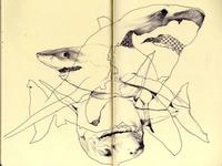bestiary: great white shark