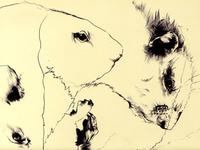 Bestiary: Groundhog