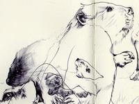 bestiary: beaver