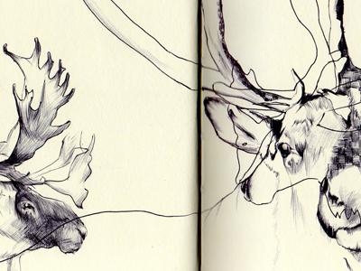 Bestiary.caribou